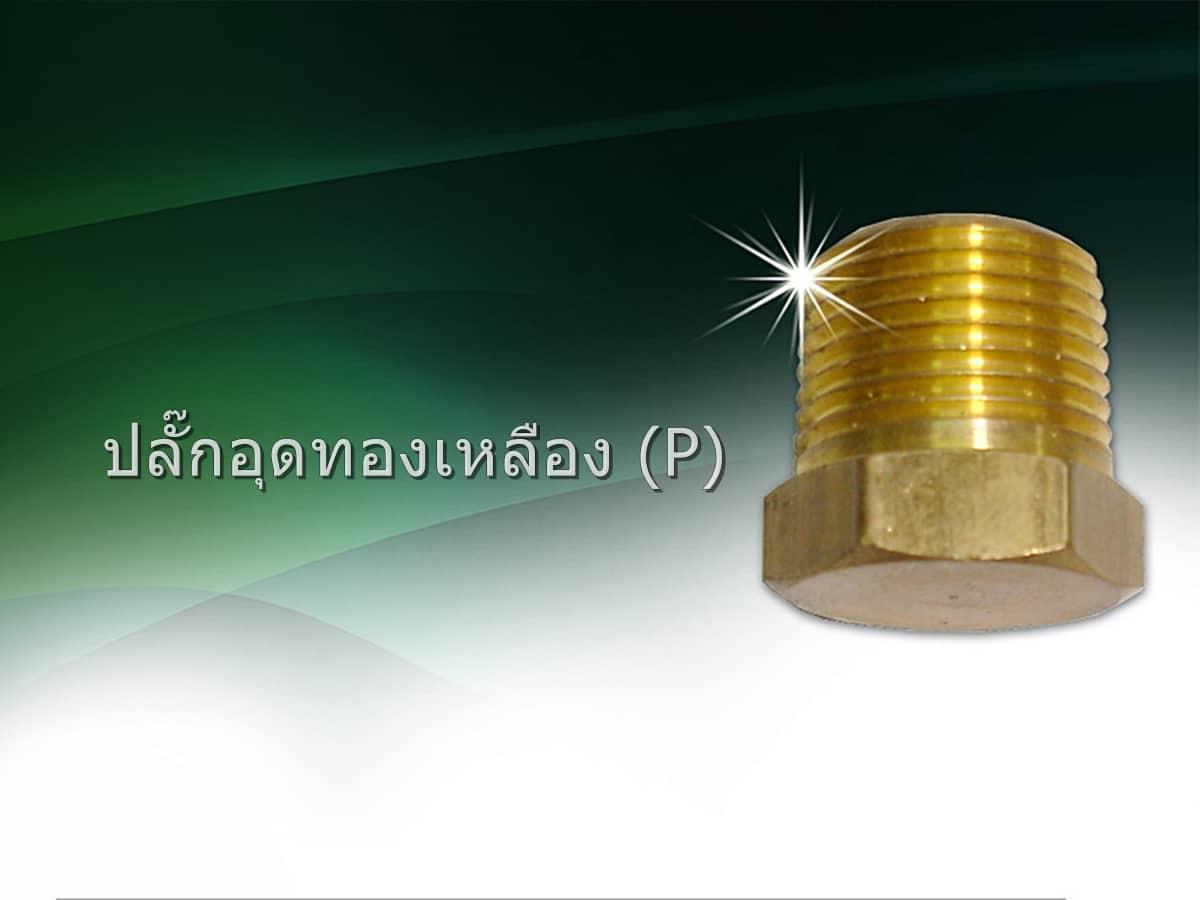 ปลั๊กอุดทองเหลือง (P)